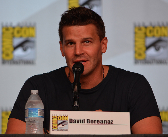 David Boreanaz (photo credit: Genevieve Collins)